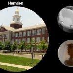 Hamden CT | Bathtub Refinishing, Reglazing & Resurfacing Quotes